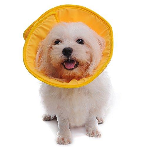 Yunt Smart Tierhalskrause Kragen,Hunde Katzen Haustier Halskrause Schutzkragen(Yellow,Medium)