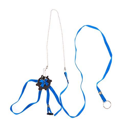 POPETPOP Haustier Harness Reptil Leine Schildkröte Eidechse Einstellbare Outdoor-Training Soft Strap (Blau) -