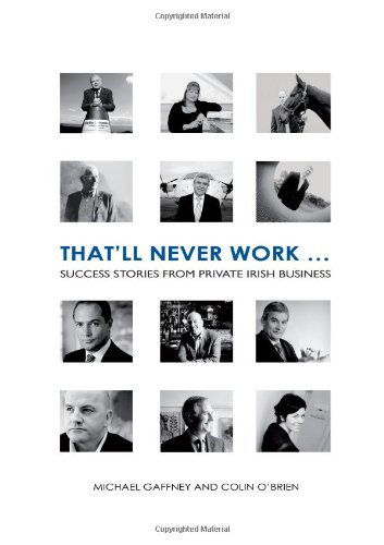That'll Never Work: Success Stories from Private Irish Business by Mike Gaffney (2008-03-25)
