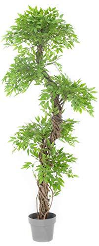 Vert lifestyle elegante pianta orientale. feng shui albero artificiale giapponese. perfetto per casa o per affari. È alta circa 5,9 piedi