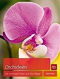 Orchideen: Die schönsten Arten und ihre Pflege (BLV)