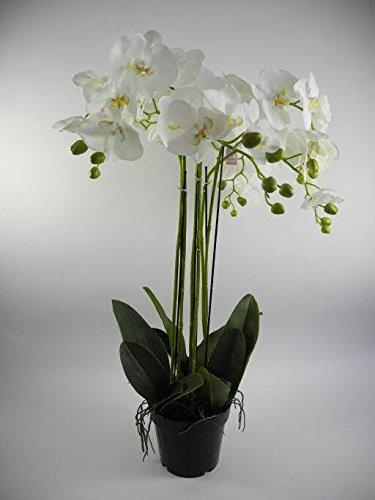 Kunstpflanze Übertopf |