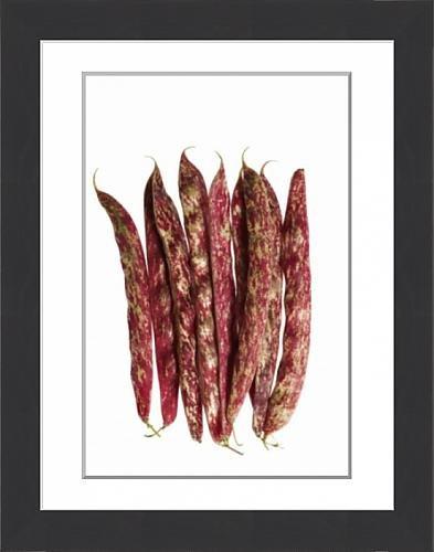 framed-print-of-beans-of-provence