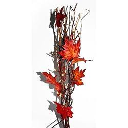 Shopping - Ratgeber 41dhKJ8xMOL._AC_UL250_SR250,250_ Geniessen Sie die farbenfrohe Jahreszeit mit Herbst-Deko