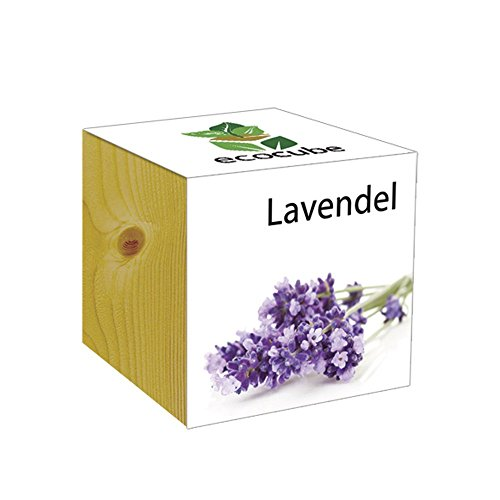 ecocube Holzwürfel - Lavendel