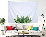 BAOQIN 60 * 80 Inches Unique Design Wonderful Prints The Green Succulent Wall Hanging Tapestry Bohemian Mandala Hippie Tapestries for Bedroom Living Room Dorm (Succulent)