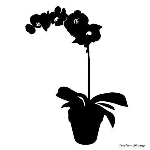 orchidea-orchidee-fiori-40-cm-x-30-cm-scegli-il-colore-18-colori-in-azione-bagno-childs-camera-da-le