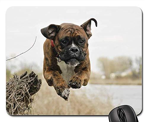 Gaming-Mauspads, Mauspad, Dog Flight Spacer Boxer River Spring Nature -
