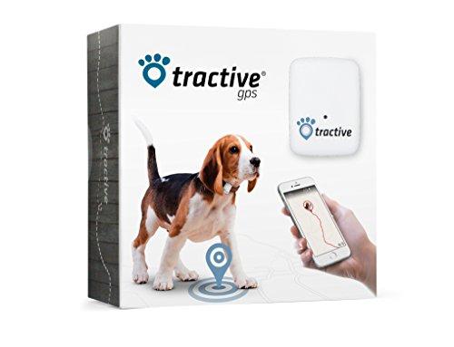 Tractive GPS, localizzatore satellitare per cani e gatti