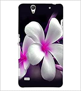 PrintDhaba Beautiful Flowers D-1067 Back Case Cover for SONY XPERIA C4 (Multi-Coloured)