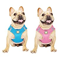 ‏‪PetVougue Dog Harness Small Medium Dogs Boy Girl Step-in Vest Harnesses Reflective Mesh Breathable 2 Packs,Pink Light Blue M‬‏