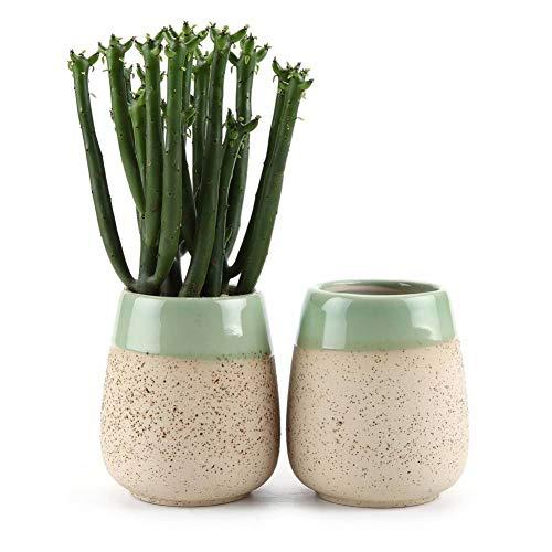 YIWAI Blumentopf Ton Glasiert Close Up Runde Tasse Succulentcactus Blumentopf Blumentopf/Container/Pflanzgefäß Beige Packung 1 Packung Mit 2 Stück -