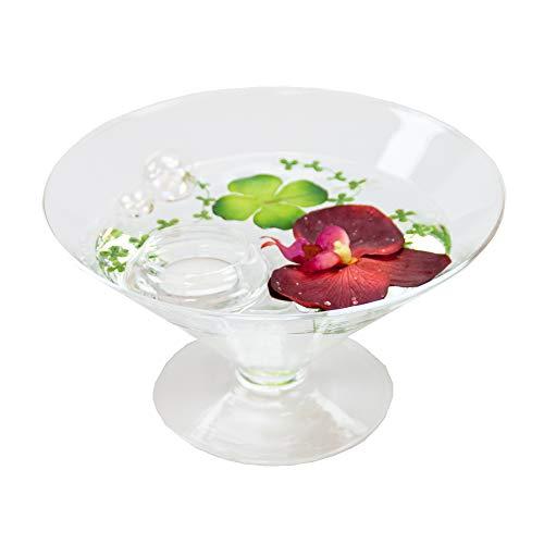 Cône en verre ronde-plateau-grand modèle-hauteur : 12 cm diamètre : 22 cm pointes-plat en verre sur pied avec décoration fleur d'orchidée rouge casablance design coupelle de glaskönig