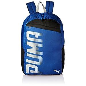 bb15c2c58dae Puma Pickled Beet Laptop Backpack (7509303) - DiscountDoor