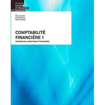 Comptabilite Financiere 1 - Pratique de la Comptabilite Financiere
