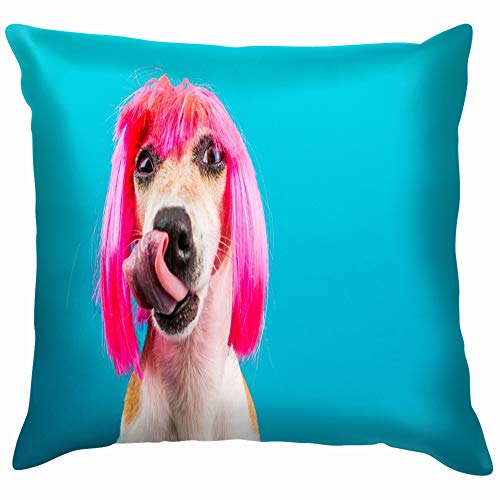 c9047f00504 Funny Dog Pink Wig Waiting Delicious Animals Wildlife Cotton Throw Pillow  Case Cushion Cover Home Office Decorative, Square 18X18 inch