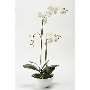 Orchidée artificielle ALICIA en coupe, 2 tiges, blanche-jaune, 80 cm - orchidée décorative / fleur artificielle - artplants