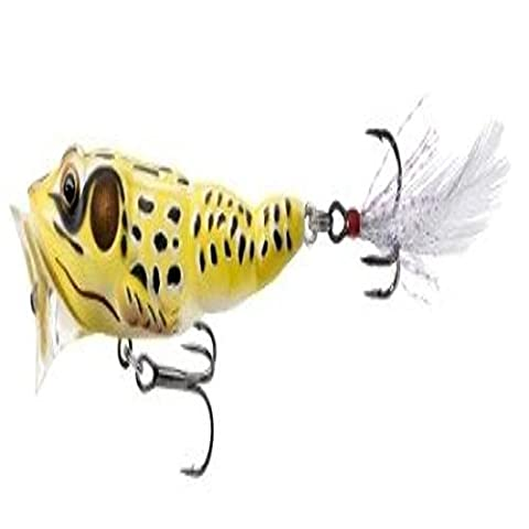 Live Target Yellow/Black Frog Popper .25 Ounce - Realistic Life Like Details