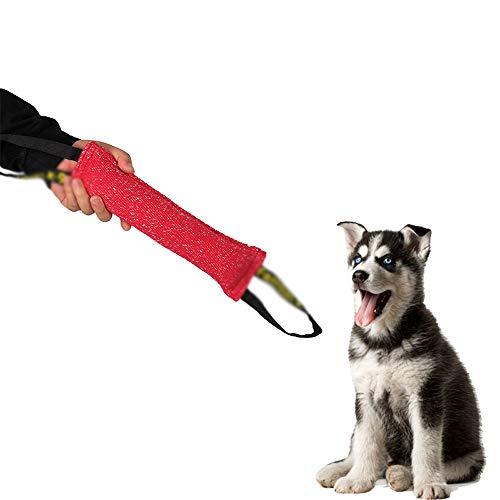 LIBWX Hundetraining Beißzangen Spielzeug mit 2 Griffen Kissen Beißen Kissen Zähne Gesunde Kauhilfe Spielen,Red