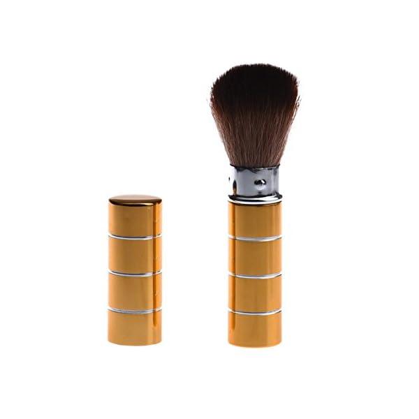 Generic E: Women' s Fashion Retractable Metal Brush Cosmetic Makeup Brushes Powder Foundation Blusher Brush Tool #Y