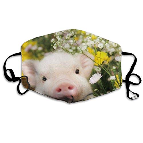 Erwachsene, Face Mask Reusable, Warm Windproof Mouth Mask, Flower Piggy Reusable Anti Dust Face Mouth Cover Mask Protective Breath Healthy Safety ()