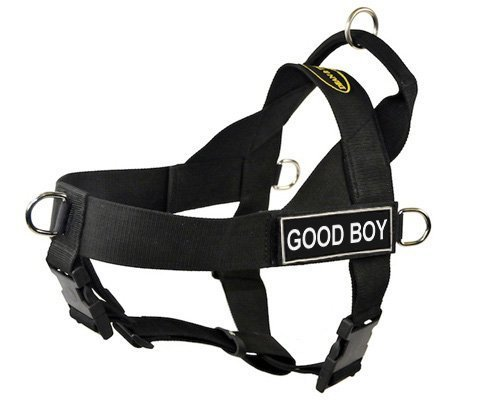 DT-Universal-No-Pull-Dog-Harness-Good-Boy-Black-X-Small-Fits-Girth-Size-21-Inch-to-25-Inch