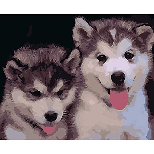 Husky Husky Tier DIY Digitales Malen Nach Zahlen Moderne Wandkunst Leinwand Malerei Einzigartiges Geburtstagsgeschenk Wohnkultur 40X50 cm DIY Rahmen (Husky-starter-kit)