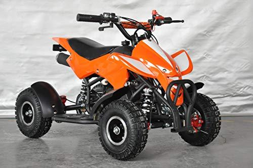 Zoom IMG-1 mini quad 49 cc atv013