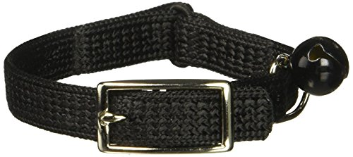 Artikelbild: Coastal Pet Sassy snag-proof Nylon Cat Sicherheit Halsband (schwarz, 20,3cm L x 3/20,3cm W)