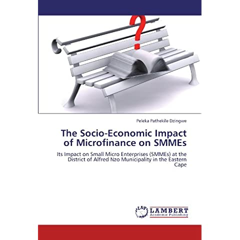 The Socio-Economic Impact of Microfinance on SMMEs: Its Impact on Small Micro Enterprises (SMMEs) at the District of Alfred Nzo Municipality in the Eastern Cape