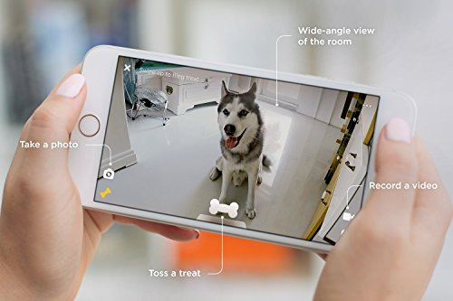 Petcube Bites Wi-Fi Pet Camera With Treat Dispenser: 2-Way Audio, HD 1080p Video And Night Vision, For Monitoring Your Dog Or Cat. Compatible with Alexa. 3