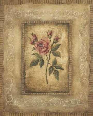 impresion-de-arte-fino-en-lienzo-grand-savin-rose-by-poloson-kimberly-medio-75-x-93-cms