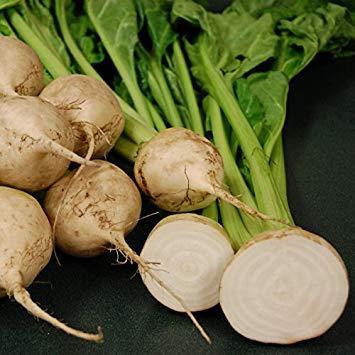 SANHOC Samen-Paket: Rote-Bete - Avalanche - 100 SeedsSEED