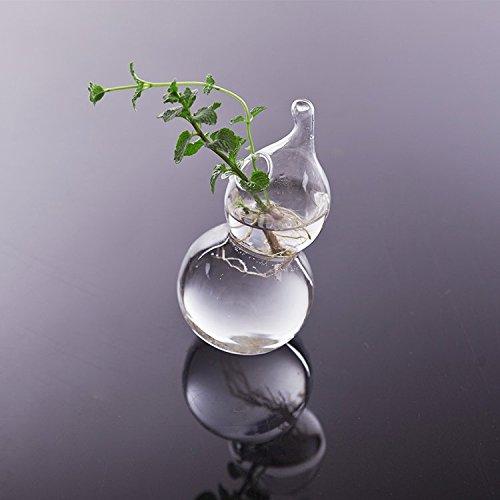 Imported Calabash Shape Glass Wall Hanging Flower Vase Plant Bottle Home Decor