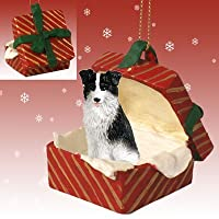 BORDER COLLIE Dog in a Red Gift Box Christmas Ornament New RGBD62 by Eyedeal Figurines