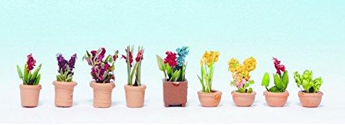 noch-14080-zierpflanzen-in-blumentopfen
