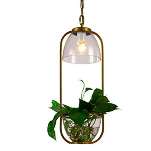 FWEF Ferro vetro a sospensione lampadario scandinavo café Creative in vaso illuminazione moderno bar Studio personalizzato illuminazione (16 *