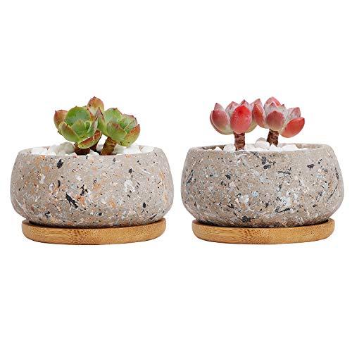 T4U Maceta de Cactus Suculenta de Cemento, Jardinera de Hormigón Maceta Contenedor Jardinera, Pequeña Olla de Barro Plantas Flores con Bandeja de Drenaje de Bambú Decoración Conjunto de 2 Gris
