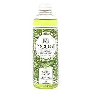 RECHARGE diffuseur de parfum - ESPRIT NATURE (bambou)