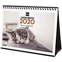 Amazon.es: Calendarios de pared: Oficina y papelería