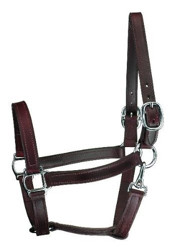 Perri 's Horse track Style Leather Turnout Halter With Snap, Black by Perri 's