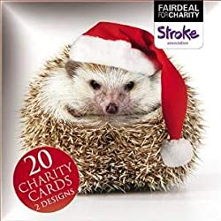 Box von 20Charity Weihnachtskarten (alm2879) Happy Igel/alle ist leise-Verkauft in Hilfe der Stroke Association