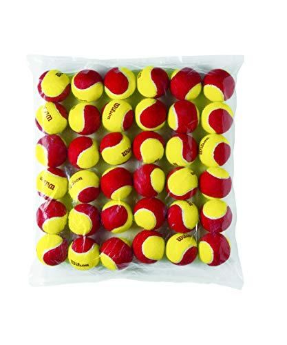 Wilson Starter Ball 36 Pack, Yellow, 6, WRT13700B