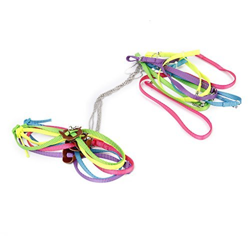 papagei-vogel-kabelbaum-leine-anti-bite-einstellbar-licht-weiche-mode-zufllige-farbe