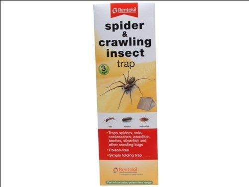 Rentokil FS58 Piège à insectes rampant et araignée