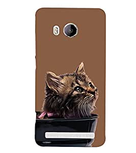Cute Cat Design 3D Hard Polycarbonate Designer Back Case Cover for Vivo Xshot