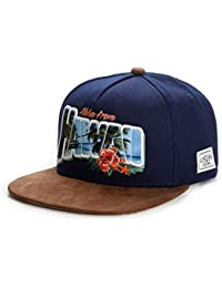 Cayler & Sons Homme Casquettes / Snapback Greetings From Hawai bleu Réglable