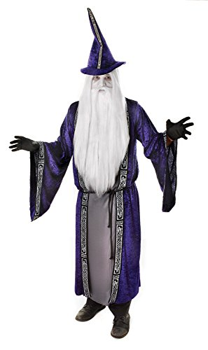 Wizard Costume/Robe costume Adult Fancy Dress