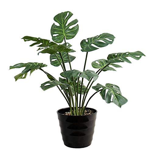 XMDNYE 1 Stück Real Touch Künstliche Palm Tree Verlässt Blume Kunststoff Latex Beschichtung Blatt Pflanze Zweig Für Hausgarten Dekoration