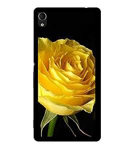 ifasho Designer Back Case Cover for Sony Xperia M4 Aqua :: Sony Xperia M4 Aqua Dual (Saussurea Obvallata Rose Dawson Rose Vanessa Peony)